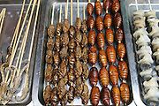 Sea horses, cicadas, and silkworm pupae on skewers for sale in Beijing, China. (From a photographic gallery of street food images, in Hungry Planet: What the World Eats, p. 130).