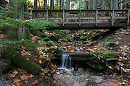 Bridge and Small Falls at Cascade Falls Regional Park near Mission, British Columbia, Canada