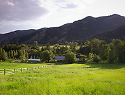 Green fields and  wooden fences at ranch