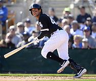 GLENDALE, ARIZONA - FEBRUARY 23:  Jon Jay #45 of the Chicago White Sox bats against the Los Angeles Dodgers on February 23, 2019 at Camelback Ranch in Glendale Arizona.  (Photo by Ron Vesely)  Subject:  Jon Jay