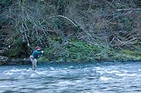 Fly fishing for steelhead along the Oregon Coast.