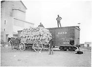Box car #4259 on siding with wagon load of sacks.<br /> D&RG    ca 1898<br /> Same as RD054-052.