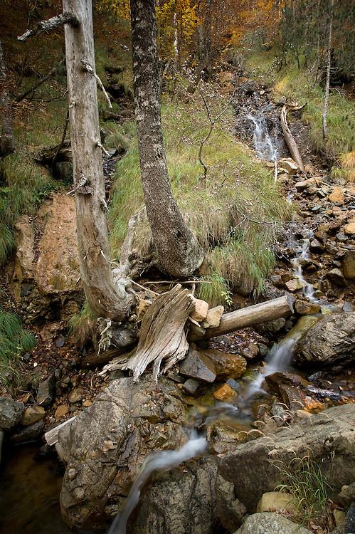 Greece, Pindos Mountains, Pindos NP, Valia Calda, Torrent in Valia Calda