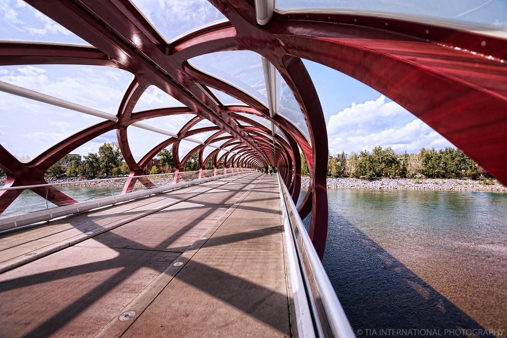 Peace Bridge (Interior) & Bow River