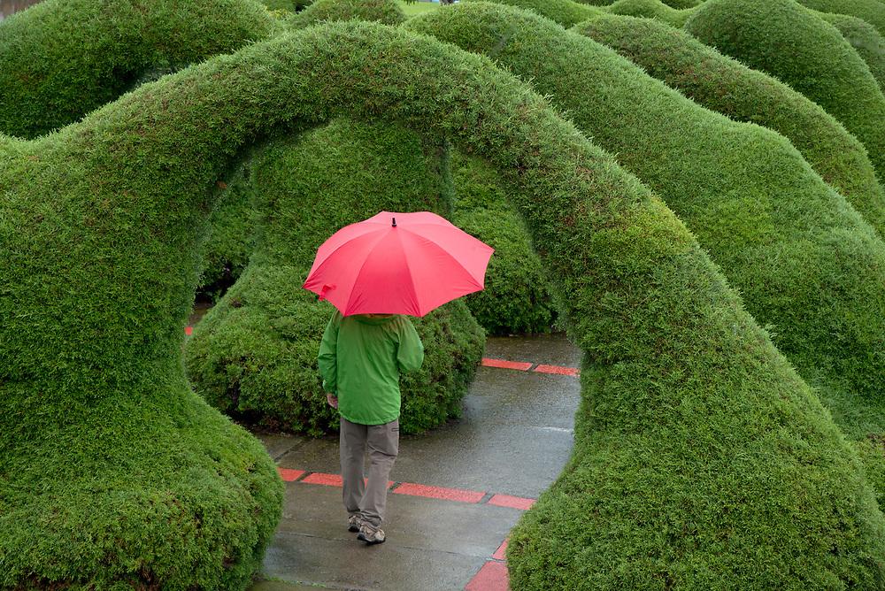 A lovely topairy garden in Costa Rica.