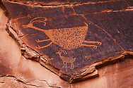 Monument Valley Tribal Park, petroglyph near Eye of the Sun arch, Mystery Valley, AZ