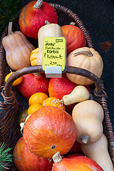 Detail of organic vegetables at weekend farmers market in Prenzlauer Berg in Berlin,, Germany
