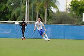 Lynn Men's Soccer