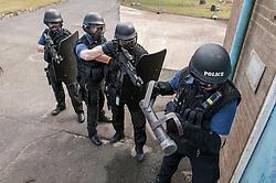Armed response team prepare to enter a building