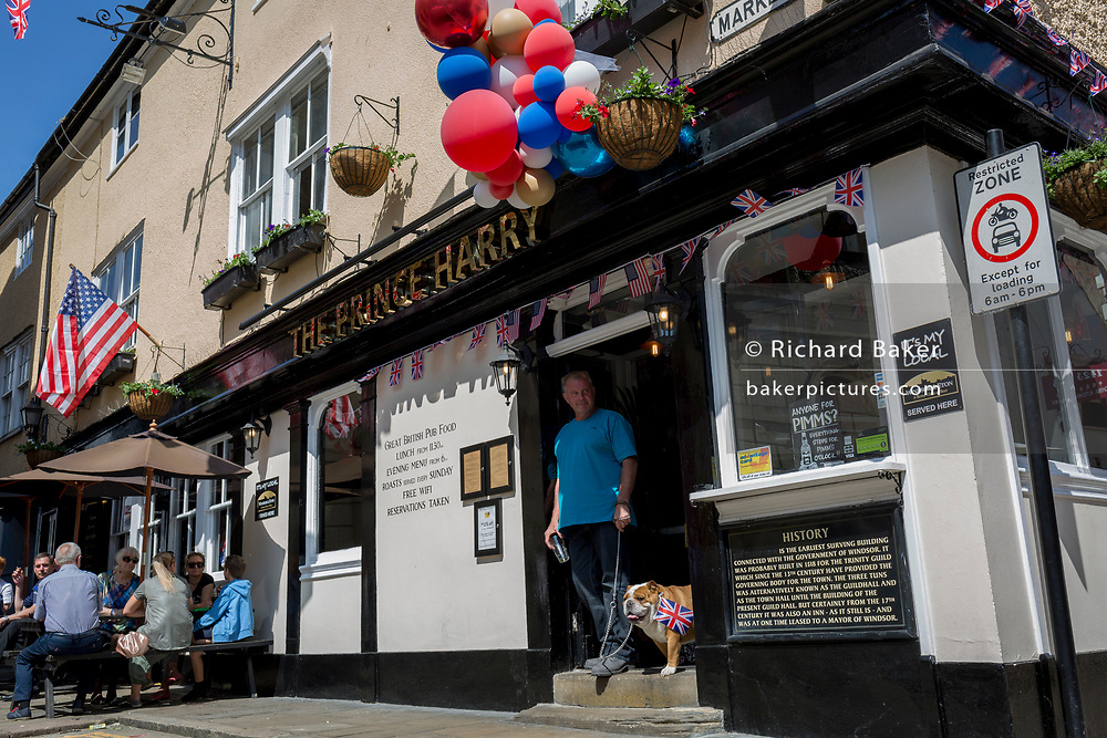 A British bulldog called Stanley with flags and balloons outside the Prince Harry pub in the old town of Windsor as it gets ready for the royal wedding between Prince Harry and his American fiance Meghan Markle, on 14th May 2018, in London, England.