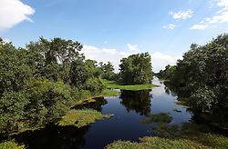 04 June 2015. Jean Lafitte National Historic Park, Louisiana.<br /> Waterways in the swamp at the Barataria Preserve wetlands south or New Orleans. <br /> Photo©; Charlie Varley/varleypix.com