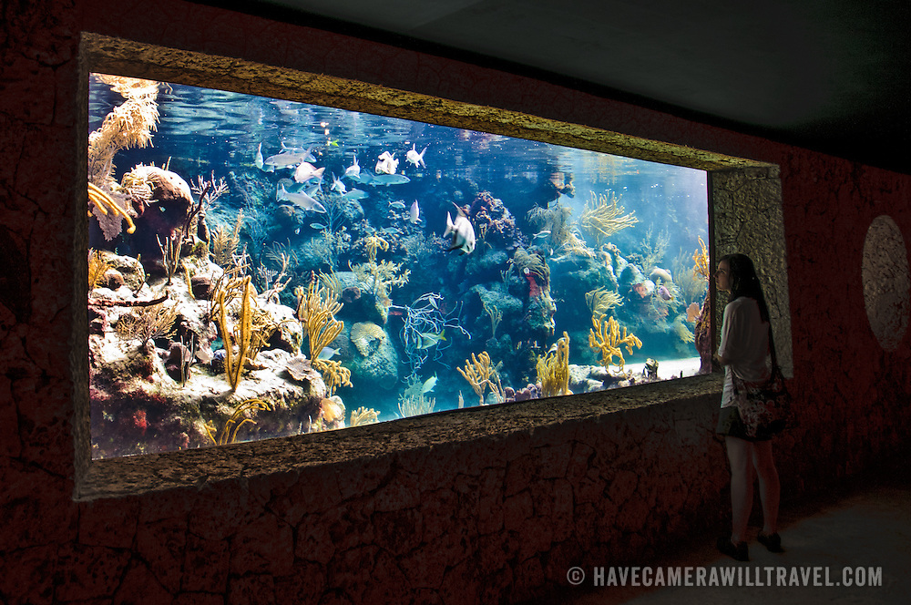 A person at right of frame looks through an underwater aquarium at Xcarat Maya theme park south of Cancun and Playa del Carmen on Mexico's Yucatana Peninsula.