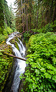 Sol Duc Falls on an overcast day at the Sol Duc unit of Olympic National Park, Washington, USA.