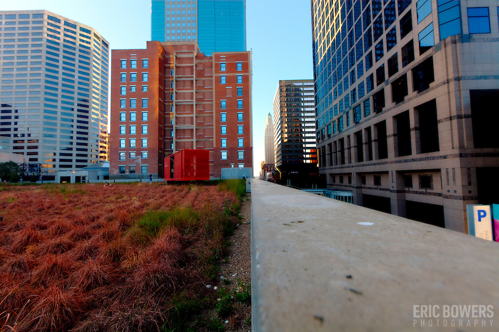 Photo in downtown Kansas City, MO looking northward along Walnut Street on the green roof at the Power and Light District.