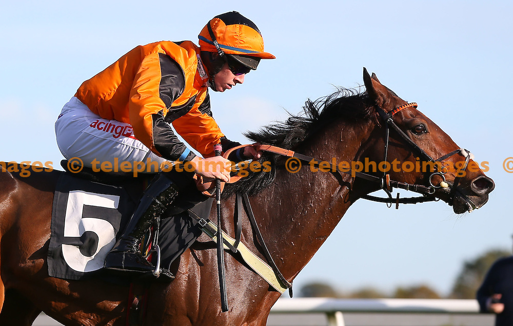 Plumpton, UK. 31st October 2016. Jack Bear (Orange Cap) ridden by Gavin Sheehan seen during the Breeders´ Cup Exclusively On At The Races Maiden Hurdle<br /> © Telephoto Images / Alamy Live News