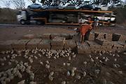 Porteirinha_MG, Brazil.<br /> <br /> Criacao de pintinhos proximo a uma rodovia em Porteirinha, Minas Gerais.<br /> <br /> Creation chick next to a highway in Porteirinha, Minas Gerais.<br /> <br /> Foto: LEO DRUMOND / NITRO