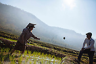 Chansee Sangdalai (left) works in a rice paddy as the landowner watches, near Tinsom Village in Laos.