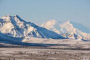 An early season snow dusts the boreal forests and Alaskan Range of mountains in Denali National Park, McKinley Park, Alaska. Denali mountain, also known as Mt McKinley is on the right side.