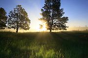 Sunrise along the Blackfoot River, Montana.