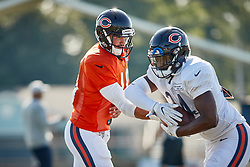 July 28, 2018 - Bourbonnais, IL, U.S. - BOURBONNAIS, IL - JULY 28: Chicago Bears quarterback Mitchell Trubisky (10) and Chicago Bears running back Jordan Howard (24) participates in drills during the Chicago Bears training camp on July 28, 2018 at Olivet Nazarene University in Bourbonnais, Illinois. (Photo by Robin Alam/Icon Sportswire) (Credit Image: © Robin Alam/Icon SMI via ZUMA Press)