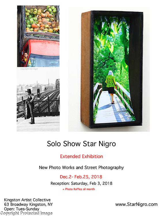 Star Nigro Solo Show  Dec 2- Feb.25, 2018