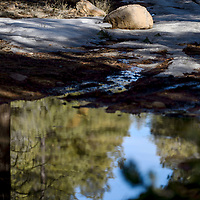 Melting snow creates collects in the ruts of an off-road trail on Mount Taylor in Grants Wednesday.