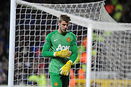 David De Gea the Manchester United goalkeeper.<br /> Barclays Premier League match, Cardiff city v Manchester Utd at the Cardiff city stadium in Cardiff, South Wales on Sunday 24th Nov 2013. pic by Phil Rees, Andrew Orchard sports photography,