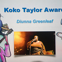 2017 Blues Music Awards