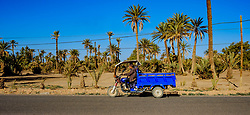 A man makes his way along a road near Skoura, Morocco using a moped and trailer<br /> <br /> (c) Andrew Wilson | Edinburgh Elite media