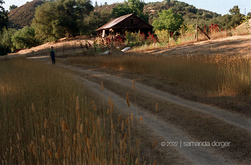 The farm sits in a peaceful hollow on Mt. Veeder.