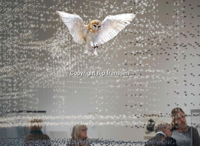 Nederland, Den Bosch, 17-12-2016Expositie van de uit engeland afkomstige kunstenares Claire Morgan . Zij maakt kunstwerken met opgezette dieren .Foto: Flip Franssen