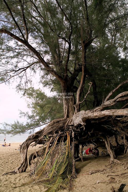 Ke'e Beach, Kauai, Hawaii located at the end of the road on Kauai's North Shore