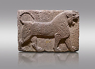 Pictures & images of Phrygian relief sculpted orthostat stone panel Andesite, Kalaba Village, Ankara, , 1200-700 B.C. Anatolian Civilisations Museum, Ankara, Turkey.<br /> <br /> Figure of a roaring lion. The cross mark on his chest draws attention. The muscles in his legs are schematic. <br /> <br /> Against a gray background. .<br /> <br /> If you prefer you can also buy from our ALAMY PHOTO LIBRARY  Collection visit : https://www.alamy.com/portfolio/paul-williams-funkystock/phrygian-antiquities.html  - Type into the LOWER SEARCH WITHIN GALLERY box to refine search by adding background colour, place, museum etc<br /> <br /> Visit our CLASSICAL WORLD PHOTO COLLECTIONS for more photos to download or buy as wall art prints https://funkystock.photoshelter.com/gallery-collection/Classical-Era-Historic-Sites-Archaeological-Sites-Pictures-Images/C0000g4bSGiDL9rw