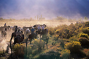 Mount Whitney pack trip - cowboys drive horse and mules to lower pasture. Route 395: Eastern Sierra Nevada Mountains of California.