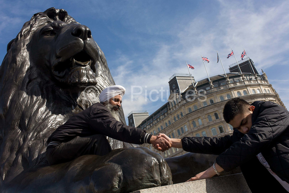 A Sikh man helps another up, beneath one of the four lions at the base of Nelson's Column in London's Trafalgar Square. As a symbol of a multi-racial, multi-ethnic Britain, we see the men from Indian descent, beneath another symbol - that of a bygone British Empire, from an era of expansion, trade and rule over the British Raj. The lion is below the memorial to Lord Haratio Nelson, Britain's navel hero who died in the Battle of Trafalgar during the Napoleonic wars, in 1805.