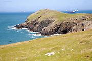 Headland Marloes peninsula Pembrokeshire Wales
