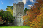 Muckross Abbey, home of The Friary Franciscan Order in Killarney National Park.<br /> Picture by Don MacMonagle -macmonagle.com