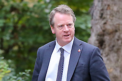 © Licensed to London News Pictures. 29/10/2019. London, UK. Secretary of State for Scotland ALISTER JACK arrives in Downing Street to attend the weekly cabinet meeting. Photo credit: Dinendra Haria/LNP