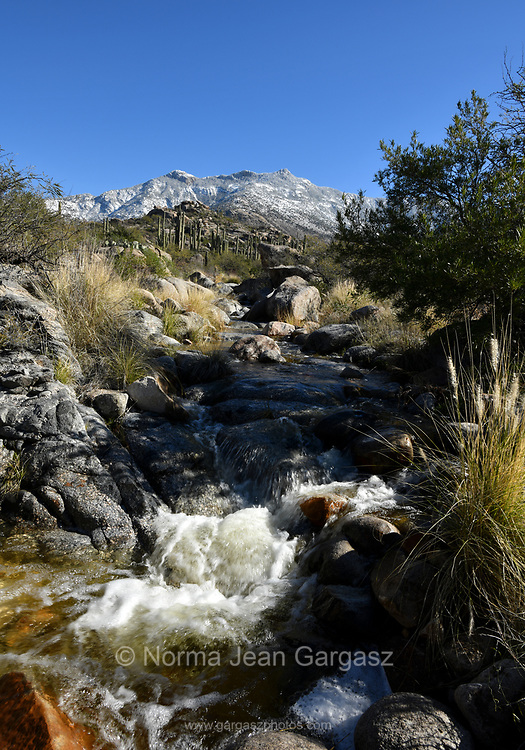 Water from melting snow flows from the Santa Catalina Mountains to the desert floor, Sonoran Desert, Coronado National Forest, Catalina, Arizona, USA.