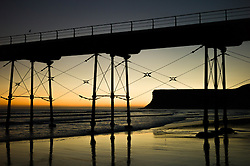 © Licensed to London News Pictures. 12/03/2014<br /> <br /> Saltburn, Cleveland, United Kingdom<br /> <br /> The Victorian pier in Saltburn, Cleveland is silhouetted against the first light of dawn.<br /> <br /> Photo credit : Ian Forsyth/LNP