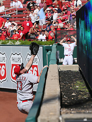 September 14, 2017 - St Louis, MO, USA - Cincinnati Reds right fielder Scott Schebler scales the right field wall but is unable to reach a two-run home run by the St. Louis Cardinals' Tommy Pham in the fifth inning on Thursday, Sept. 14, 2017, at Busch Stadium in St. Louis. The Cards won, 5-2. (Credit Image: © Chris Lee/TNS via ZUMA Wire)