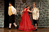 LHS Once Upon A Mattress dress rehearsal Wednesday, April 18, 2011.