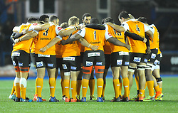 Cheetahs team talk<br /> <br /> Photographer Mike Jones/Replay Images<br /> <br /> Guinness PRO14 Round 14 - Cardiff Blues v Cheetahs - Saturday 10th February 2018 - Cardiff Arms Park - Cardiff<br /> <br /> World Copyright © Replay Images . All rights reserved. info@replayimages.co.uk - http://replayimages.co.uk