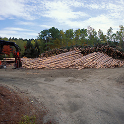 Near Baxter State Park, ME. Logging. Northern Forest. This logging scene can be found just outside of Maine's Baxter State Park.