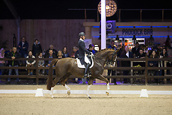 Hanzon Theo, (NED), Zoe<br /> Grand Prix Freestyle Test<br /> CDI 4* Azelhof Lier 2015<br /> © Hippo Foto - Leanjo de Koster