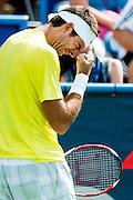 Argentina's Juan Martin Del Potro reacts  during his men's final singles match against USA's John Isner at the Citi Open ATP tennis tournament in Washington, DC, USA, 4 Aug 2013. Del Potro won the final 3-6, 6-1, 6-2.