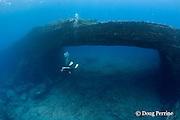 scuba diver at Niihau Arches dive site, off Niihau, Hawaii, USA ( Central Pacific Ocean ) MR 420