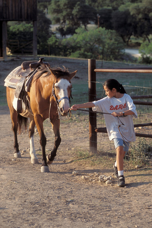5th grade Hispanic girl leading horse back into corral at Outdoor Education Camp in Bandera, Texas. Model Release.<br /> ©Bob Daemmrich