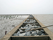 A coastal dyke built to prevent salt water intrusion caused by high tides in the Mekong Delta, Vietnam. The coastal villages in the low-lying Delta are extremely vulnerable to rising sea levels, salt water intrusion and climate change, which are disrupting the lives of farming and fishing-dependent communities.