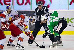 vs Ales Music of Olimpija during ice-hockey match between HDD Tilia Olimpija Ljubljana (SLO) and EC Red Bull Salzburg (AUT) in 2nd Quaterfinals of EBEL league, on March 1, 2011 in Hala Tivoli, Ljubljana, Slovenia. (Photo By Vid Ponikvar / Sportida.com)